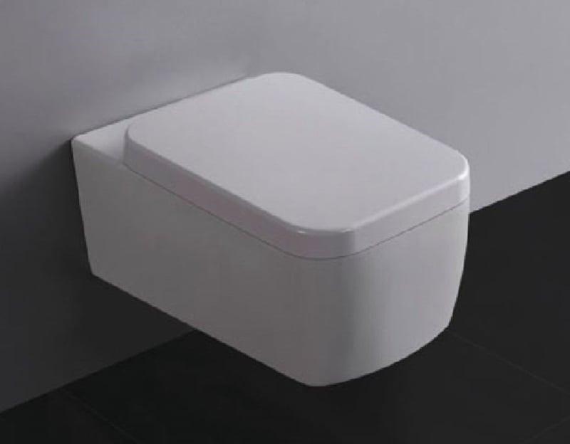 Achterwand Hangend Toilet : ▷ praxis hangend toilet kopen online internetwinkel