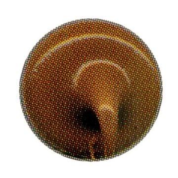 Litokol C-300 voegmiddel 2, 5kg, pietra assisi