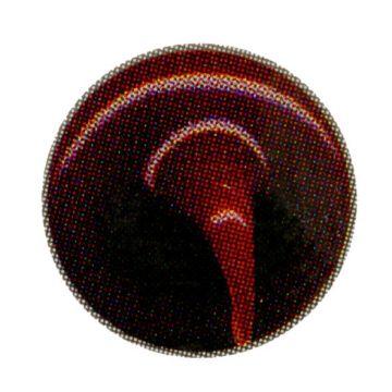 Litokol C-360 voegmiddel 2, 5kg, melanzana
