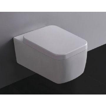Wiesbaden Larx hangend toilet diepspoel met softclose- en quickrelease-zitting met deksel, wit